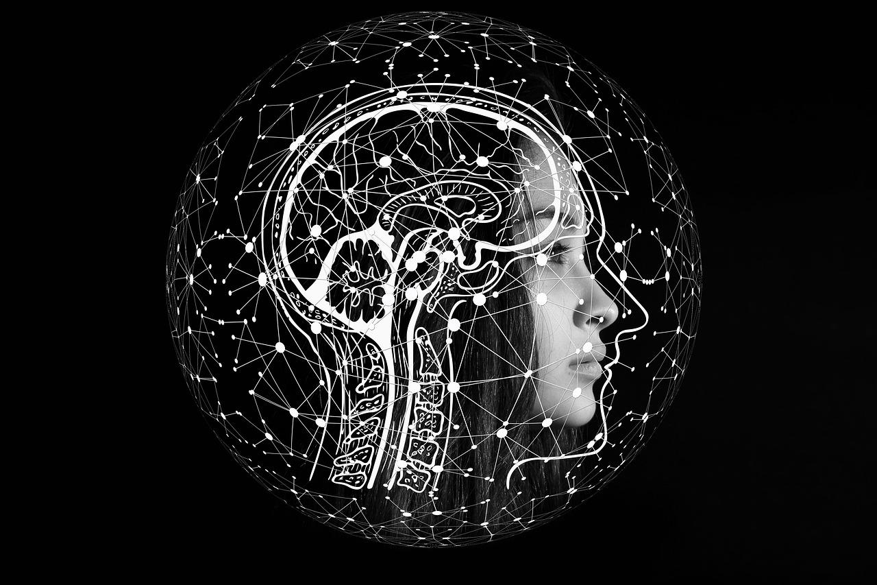 Mehr Conversions dank Psychologie: So steigerst du den Umsatz in deinem Webshop mit einfachen psychologischen Tricks.